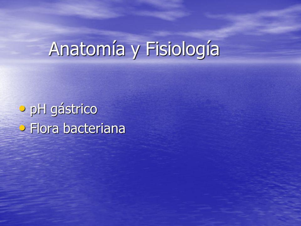 Anatomía y Fisiología pH gástrico pH gástrico Flora bacteriana Flora bacteriana