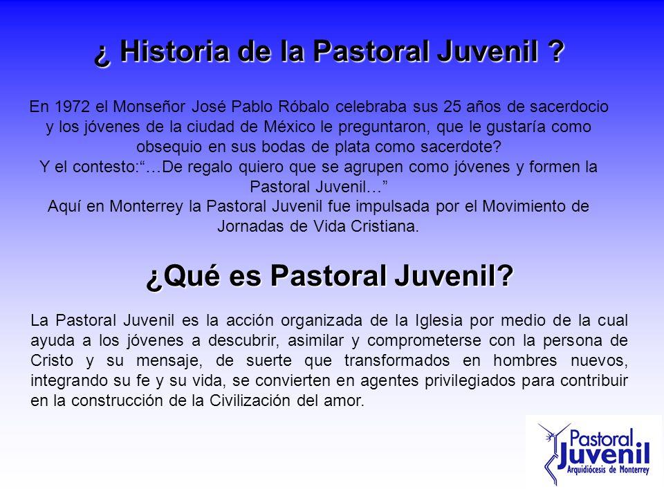 ¿ Historia de la Pastoral Juvenil ? En 1972 el Monseñor José Pablo Róbalo celebraba sus 25 años de sacerdocio y los jóvenes de la ciudad de México le