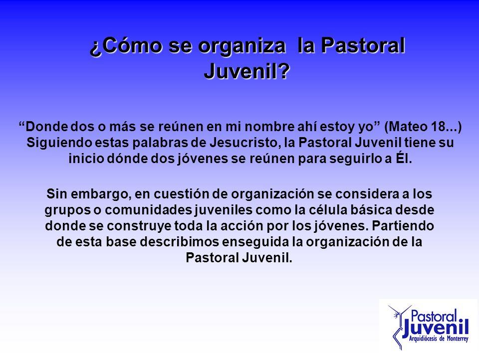 ¿Cómo se organiza la Pastoral Juvenil? Donde dos o más se reúnen en mi nombre ahí estoy yo (Mateo 18...) Siguiendo estas palabras de Jesucristo, la Pa