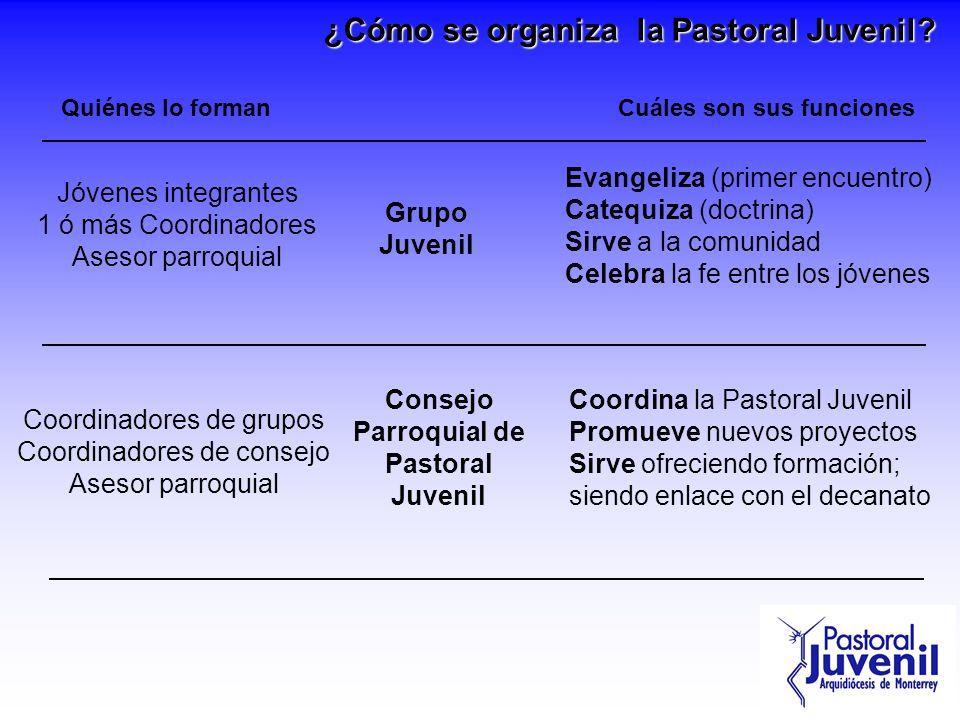 ¿Cómo se organiza la Pastoral Juvenil? Grupo Juvenil Evangeliza (primer encuentro) Catequiza (doctrina) Sirve a la comunidad Celebra la fe entre los j