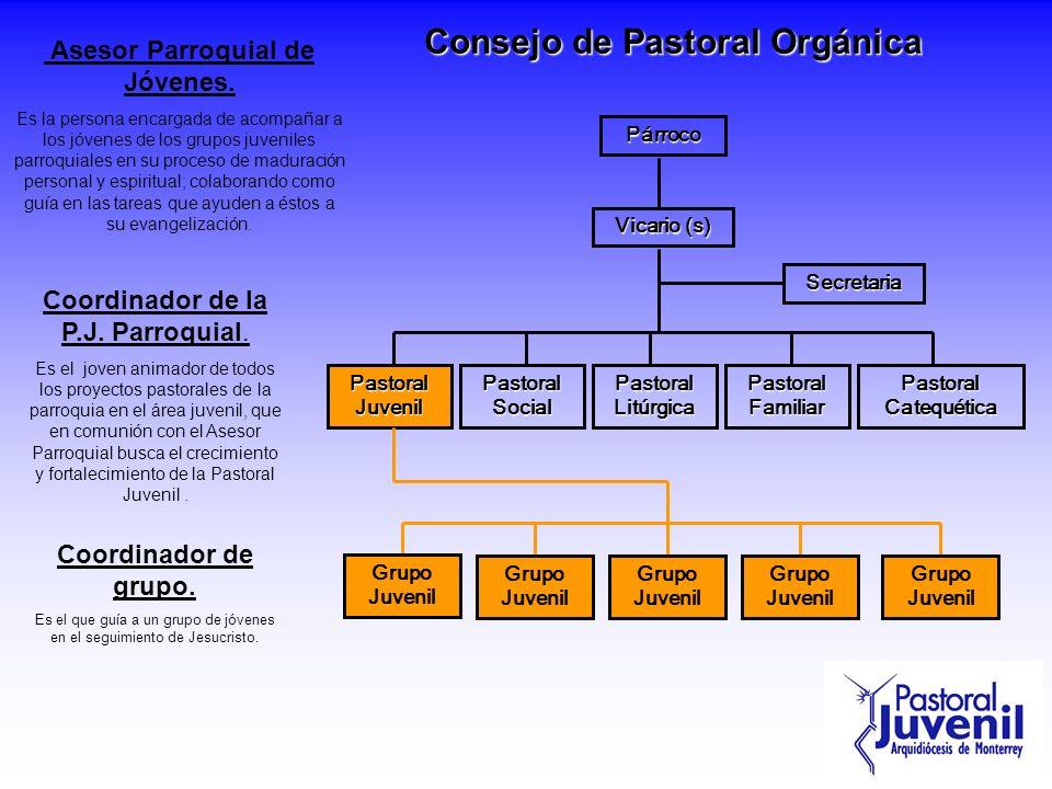 Consejo de Pastoral Orgánica Párroco Vicario (s) Secretaria Pastoral Juvenil Pastoral Social Pastoral Catequética Pastoral Litúrgica Pastoral Familiar