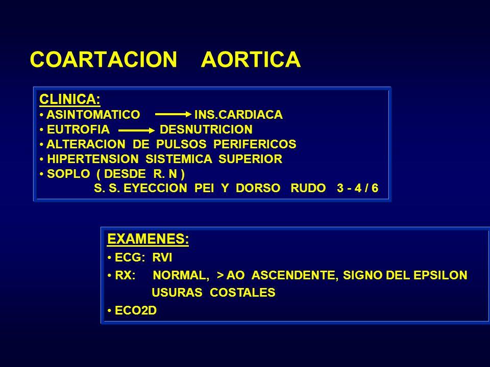 CLINICA: ASINTOMATICO INS.CARDIACA EUTROFIA DESNUTRICION ALTERACION DE PULSOS PERIFERICOS HIPERTENSION SISTEMICA SUPERIOR SOPLO ( DESDE R. N ) S. S. E