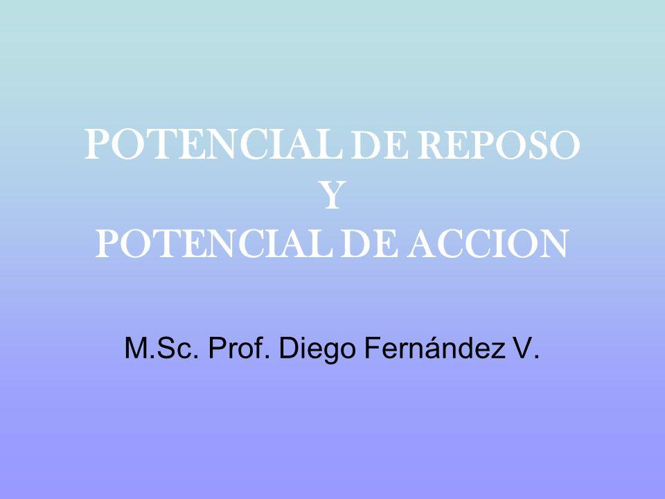 POTENCIAL DE REPOSO Y POTENCIAL DE ACCION M.Sc. Prof. Diego Fernández V.