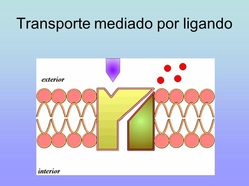 Transporte mediado por ligando