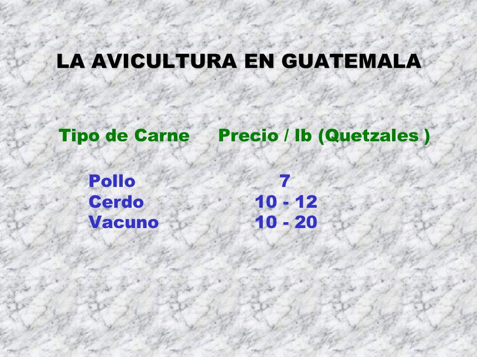 LA AVICULTURA EN GUATEMALA Tipo de Carne Precio / lb (Quetzales ) Pollo 7 Cerdo 10 - 12 Vacuno 10 - 20