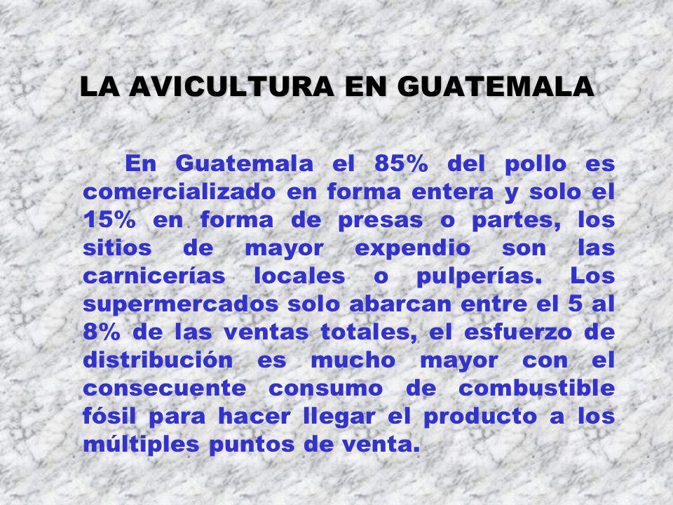 LA AVICULTURA EN GUATEMALA En Guatemala el 85% del pollo es comercializado en forma entera y solo el 15% en forma de presas o partes, los sitios de ma