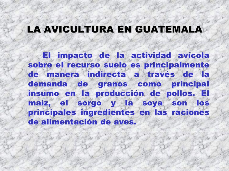 LA AVICULTURA EN GUATEMALA El impacto de la actividad avícola sobre el recurso suelo es principalmente de manera indirecta a través de la demanda de g