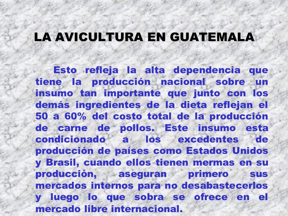 LA AVICULTURA EN GUATEMALA Esto refleja la alta dependencia que tiene la producción nacional sobre un insumo tan importante que junto con los demás in