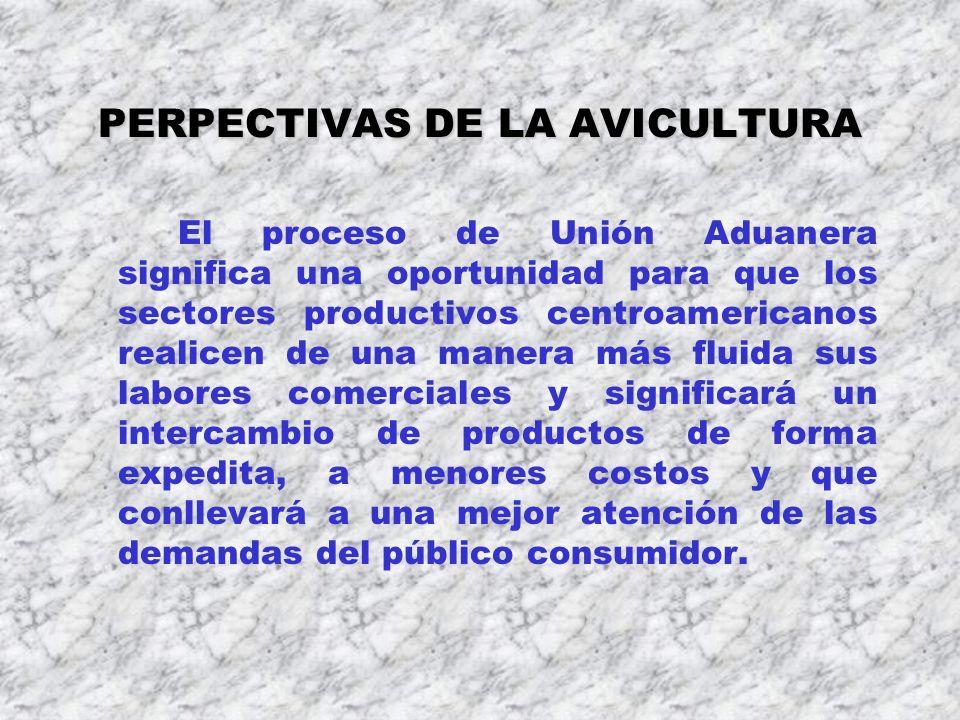 PERPECTIVAS DE LA AVICULTURA El proceso de Unión Aduanera significa una oportunidad para que los sectores productivos centroamericanos realicen de una