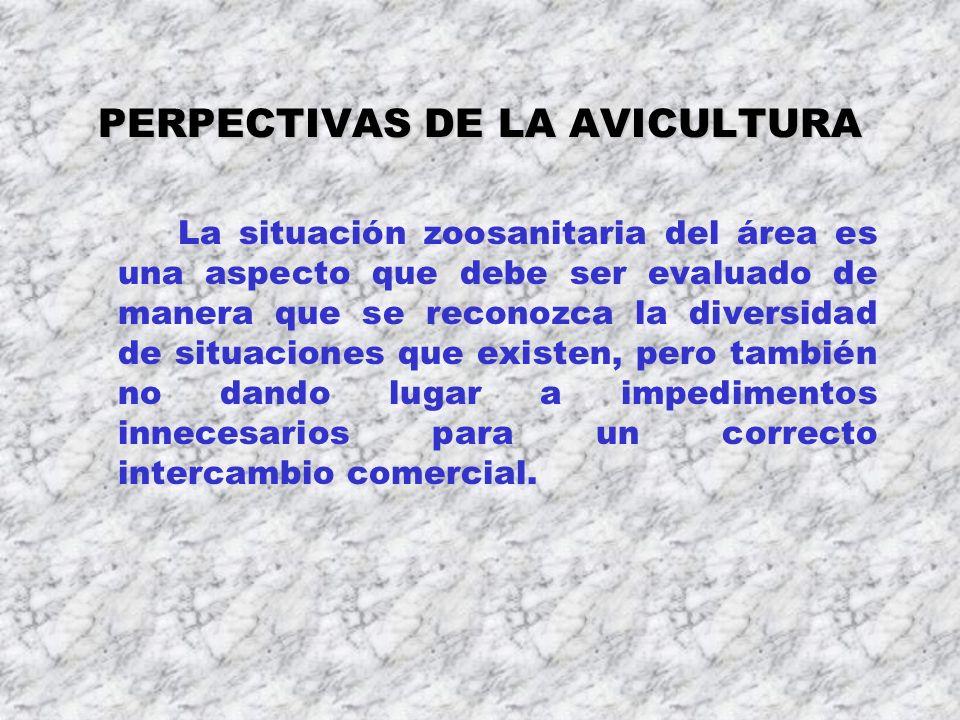PERPECTIVAS DE LA AVICULTURA La situación zoosanitaria del área es una aspecto que debe ser evaluado de manera que se reconozca la diversidad de situa