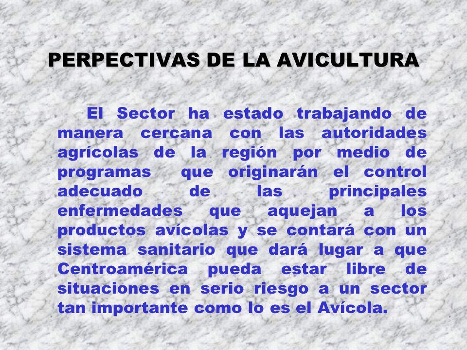 PERPECTIVAS DE LA AVICULTURA El Sector ha estado trabajando de manera cercana con las autoridades agrícolas de la región por medio de programas que or