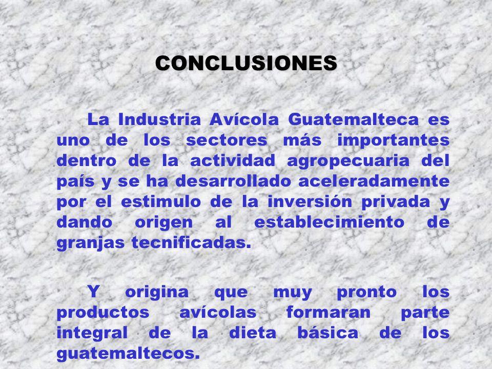 CONCLUSIONES La Industria Avícola Guatemalteca es uno de los sectores más importantes dentro de la actividad agropecuaria del país y se ha desarrollad