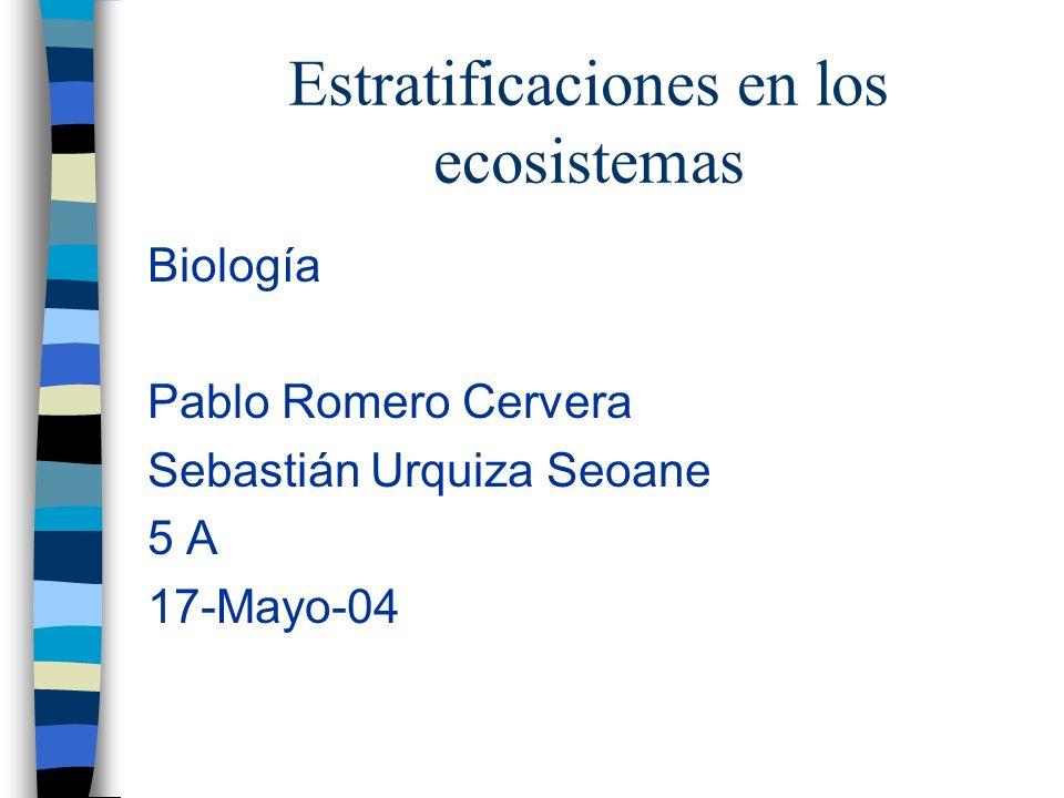 Estratificaciones en los ecosistemas Biología Pablo Romero Cervera Sebastián Urquiza Seoane 5 A 17-Mayo-04