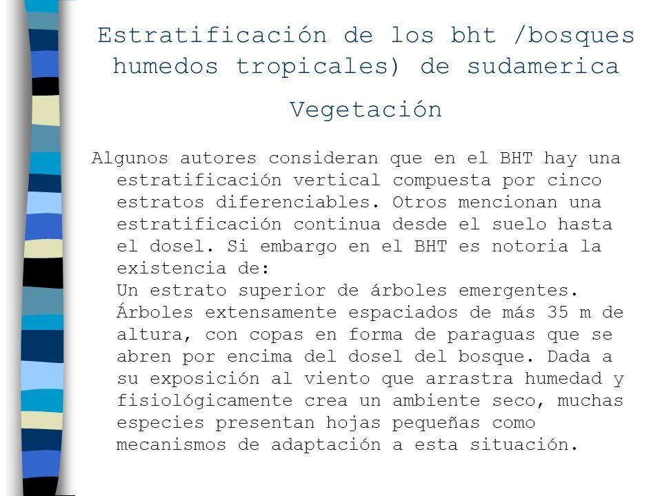 Estratificación de los bht /bosques humedos tropicales) de sudamerica Vegetación Algunos autores consideran que en el BHT hay una estratificación vert