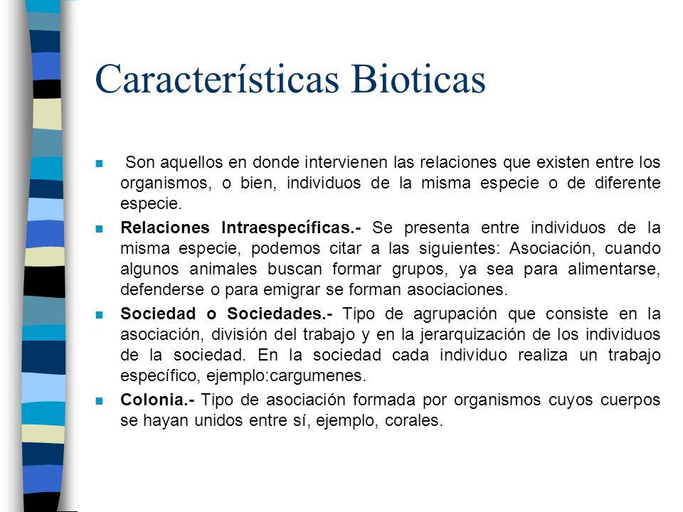 Características Bioticas n Son aquellos en donde intervienen las relaciones que existen entre los organismos, o bien, individuos de la misma especie o