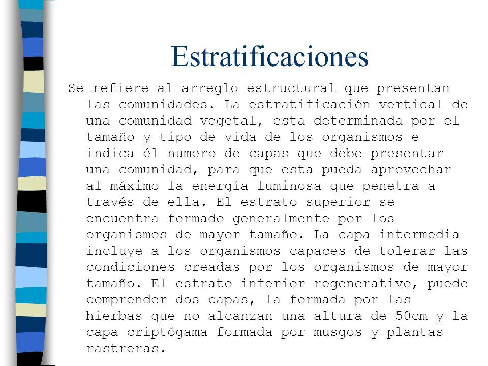 Estratificaciones Se refiere al arreglo estructural que presentan las comunidades. La estratificación vertical de una comunidad vegetal, esta determin