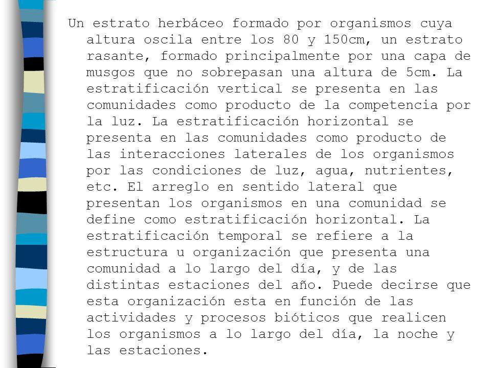 Ejemplos: Hay que distinguir entre plegamientos y levantamientos de la cordillera de los Andes.