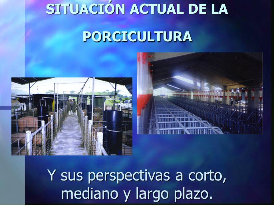 SITUACIÓN ACTUAL DE LA PORCICULTURA Y sus perspectivas a corto, mediano y largo plazo.