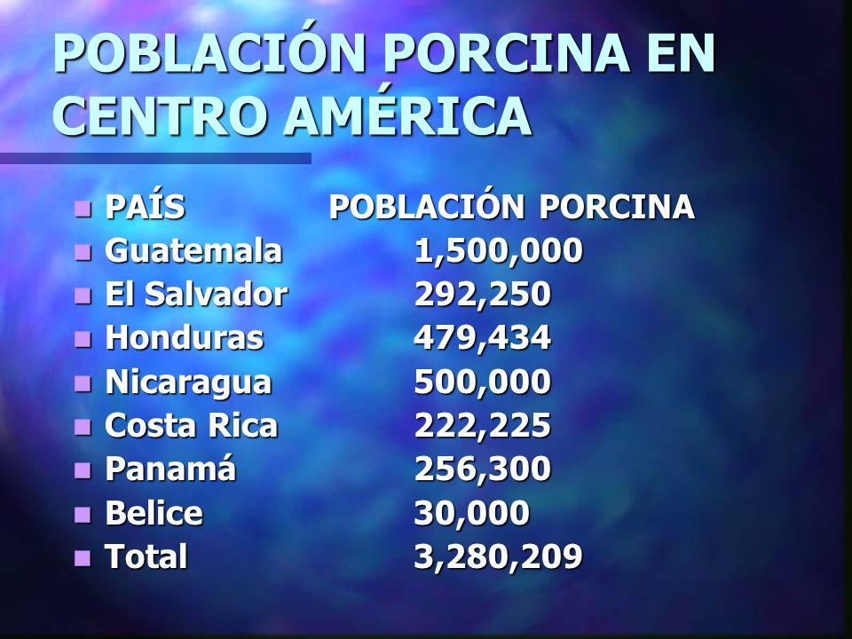 POBLACIÓN PORCINA EN CENTRO AMÉRICA PAÍS POBLACIÓN PORCINA PAÍS POBLACIÓN PORCINA Guatemala 1,500,000 Guatemala 1,500,000 El Salvador 292,250 El Salva