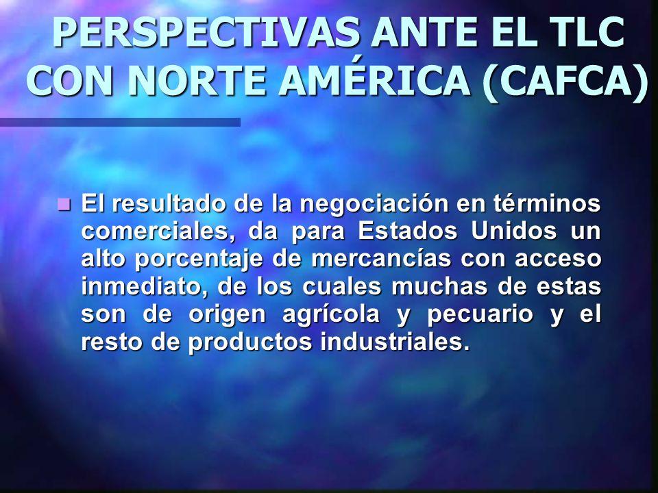PERSPECTIVAS ANTE EL TLC CON NORTE AMÉRICA (CAFCA) El resultado de la negociación en términos comerciales, da para Estados Unidos un alto porcentaje d