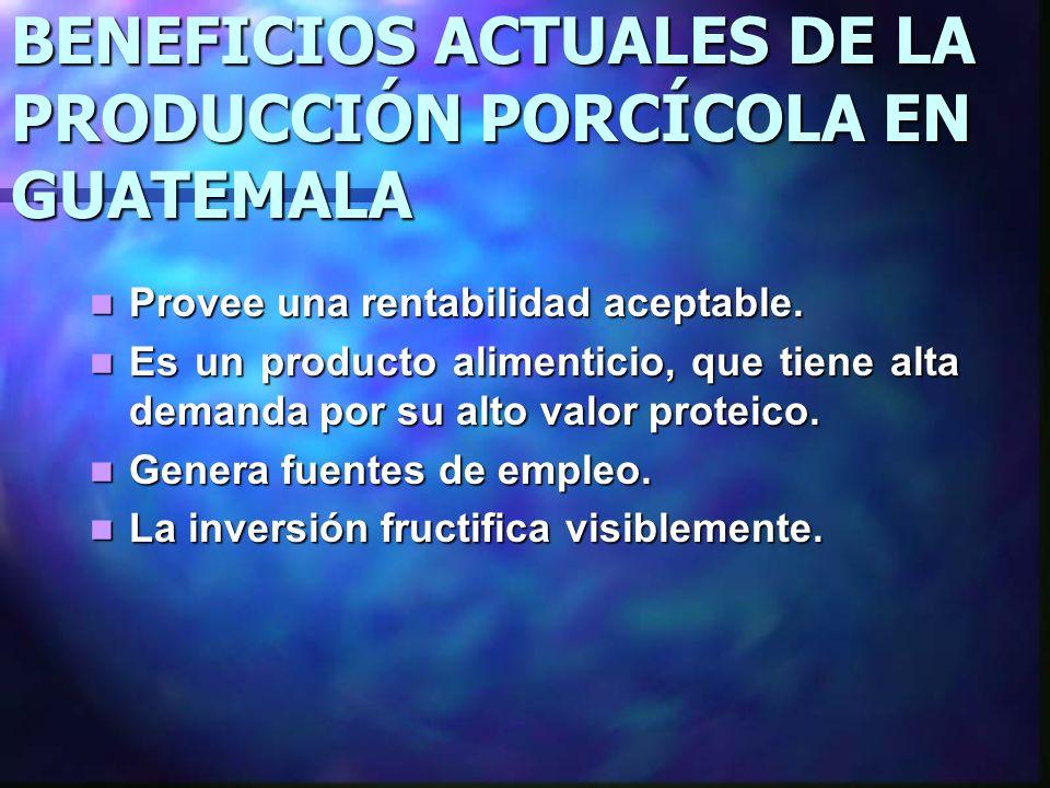BENEFICIOS ACTUALES DE LA PRODUCCIÓN PORCÍCOLA EN GUATEMALA Provee una rentabilidad aceptable. Provee una rentabilidad aceptable. Es un producto alime