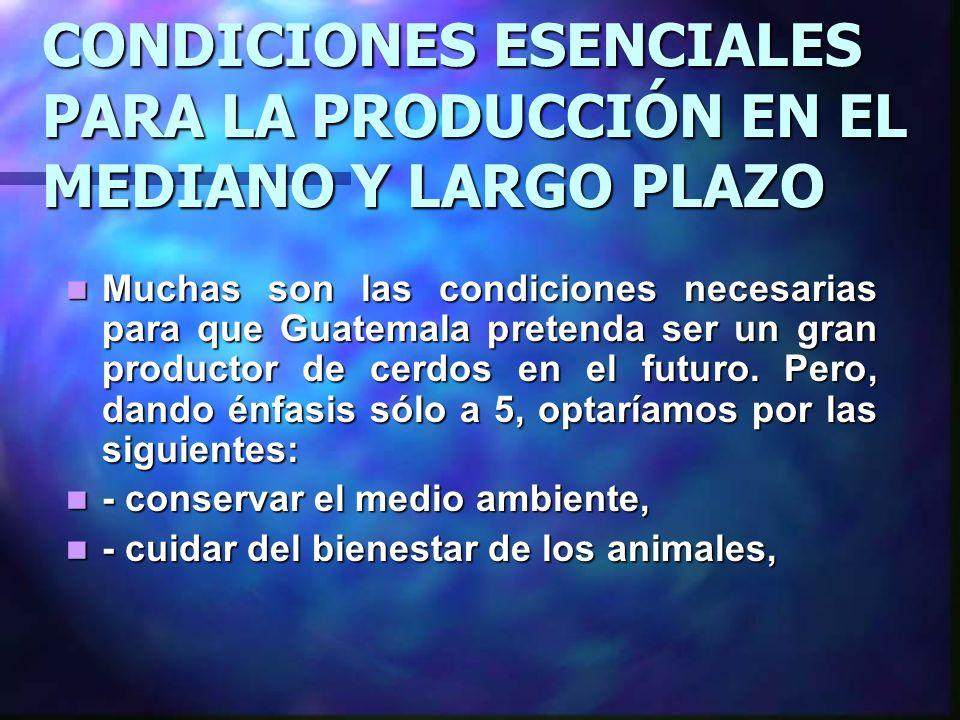CONDICIONES ESENCIALES PARA LA PRODUCCIÓN EN EL MEDIANO Y LARGO PLAZO Muchas son las condiciones necesarias para que Guatemala pretenda ser un gran pr