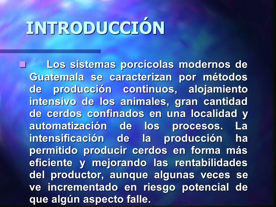 CONDICIONES ESENCIALES PARA LA PRODUCCIÓN EN EL MEDIANO Y LARGO PLAZO Muchas son las condiciones necesarias para que Guatemala pretenda ser un gran productor de cerdos en el futuro.