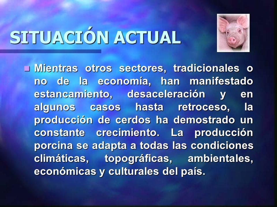 La Asociación de Porcicultores de Guatemala (APOGUA), comenta que desde el 2000 la actividad ha ido creciendo a un ritmo del 10% con base en el inventario de vientres.