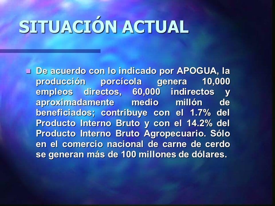 Actualmente la porcicultura en Guatemala es considerada una de las actividades pecuarias que ha tomado mayor auge.