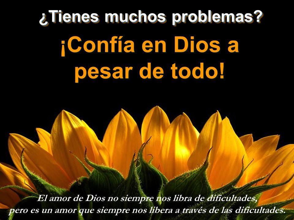 ¡Confía en Dios a pesar de todo.¡Confía en Dios a pesar de todo.