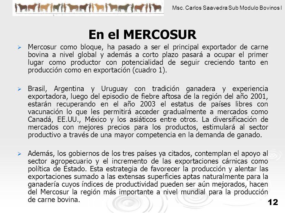 Msc. Carlos Saavedra Sub Modulo Bovinos I 12 En el MERCOSUR En el MERCOSUR Mercosur como bloque, ha pasado a ser el principal exportador de carne bovi