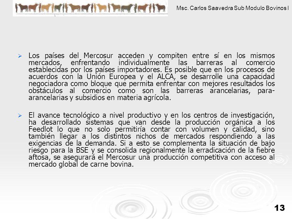 Msc. Carlos Saavedra Sub Modulo Bovinos I 13 Los países del Mercosur acceden y compiten entre sí en los mismos mercados, enfrentando individualmente l