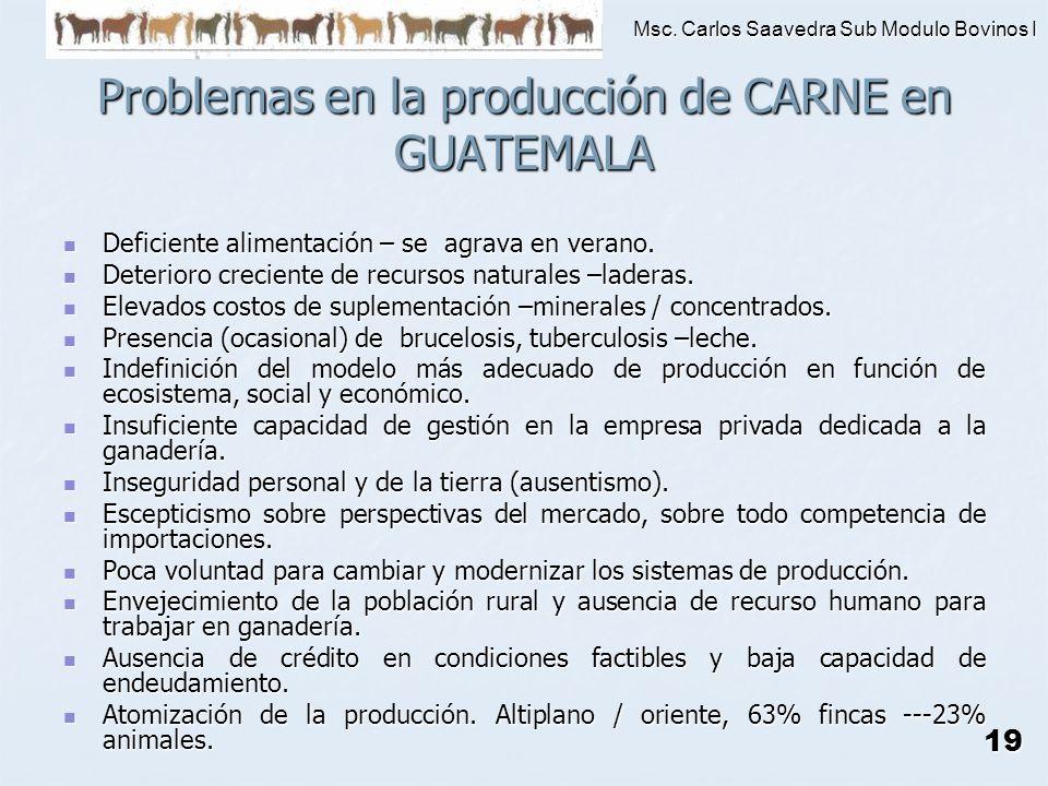 Msc. Carlos Saavedra Sub Modulo Bovinos I 19 Problemas en la producción de CARNE en GUATEMALA Deficiente alimentación – se agrava en verano. Deficient