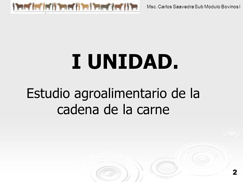 Msc. Carlos Saavedra Sub Modulo Bovinos I 22 I UNIDAD. Estudio agroalimentario de la cadena de la carne