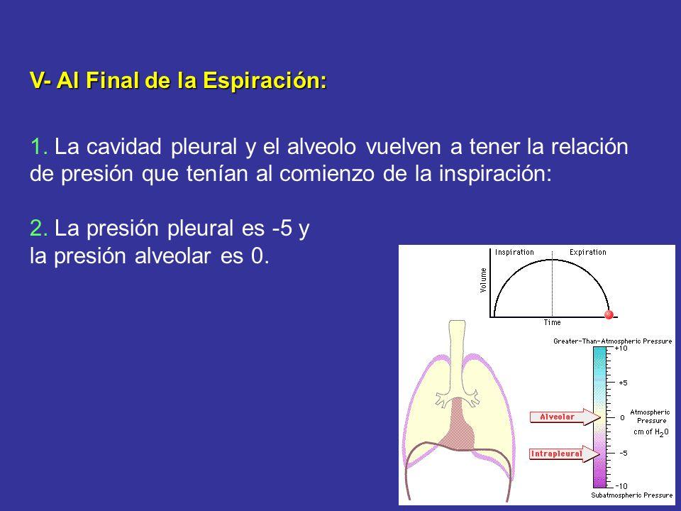 V- Al Final de la Espiración: 1. La cavidad pleural y el alveolo vuelven a tener la relación de presión que tenían al comienzo de la inspiración: 2. L