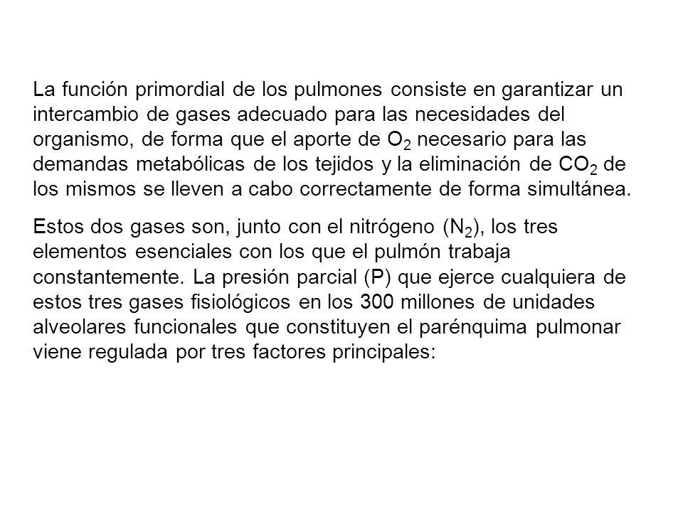 1.- 1.- La composición del gas inspirado, dependiente de la fracción inspiratoria de O 2 (FIO 2 ) y de la ventilación alveolar (VA); 2.- 2.- Los cocientes o relaciones ventilación perfusión (VA/Q) pulmonares; y 3.- 3.- La composición de la sangre venosa mixta (mezclada) (v), dependiente a su vez del flujo sanguíneo o gasto cardiaco (QT) del organismo y del consumo de O 2 (VO 2 ) tisular.