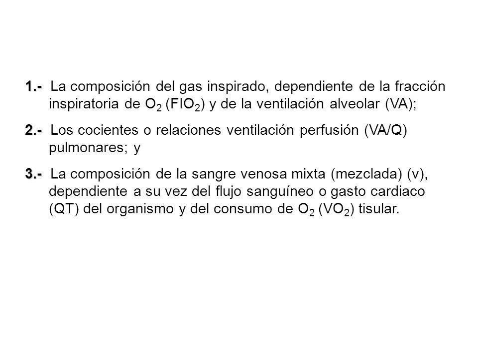 1.- 1.- La composición del gas inspirado, dependiente de la fracción inspiratoria de O 2 (FIO 2 ) y de la ventilación alveolar (VA); 2.- 2.- Los cocie