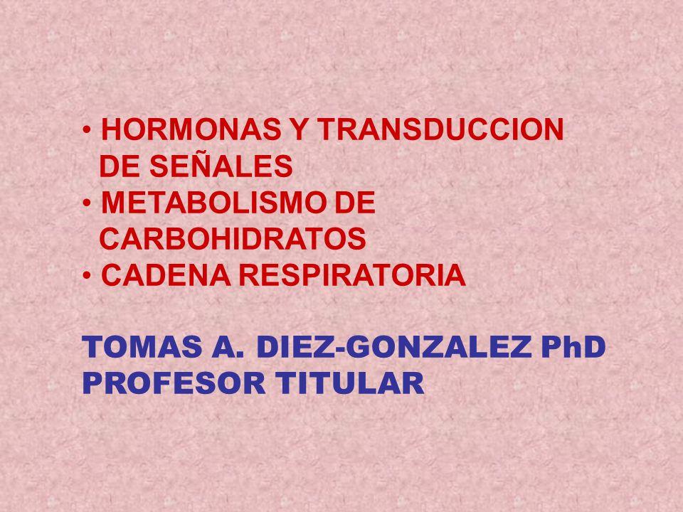 HORMONAS Y TRANSDUCCION DE SEÑALES METABOLISMO DE CARBOHIDRATOS CADENA RESPIRATORIA TOMAS A. DIEZ-GONZALEZ PhD PROFESOR TITULAR