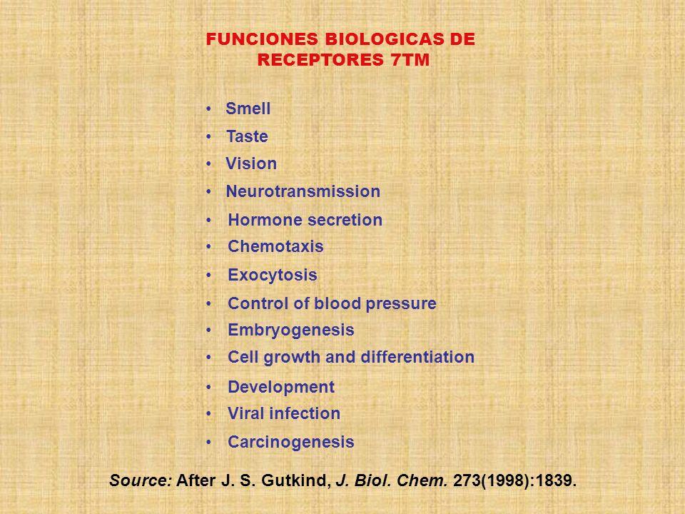 FUNCIONES BIOLOGICAS DE RECEPTORES 7TM Source: After J. S. Gutkind, J. Biol. Chem. 273(1998):1839. Carcinogenesis Viral infection Development Cell gro