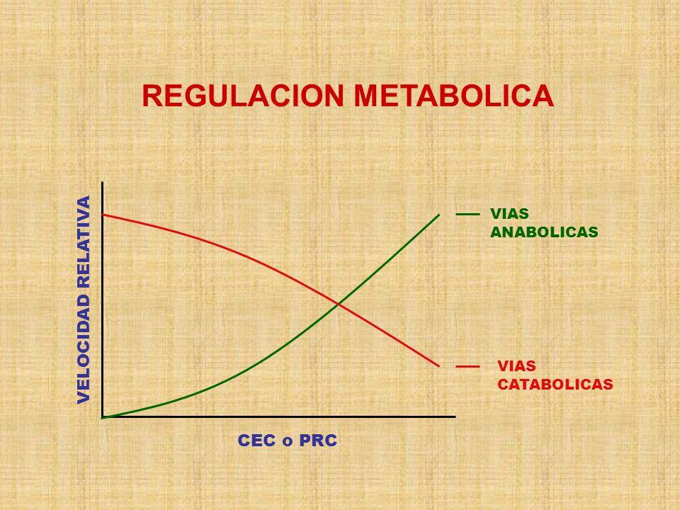 REGULACION METABOLICA VELOCIDAD RELATIVA CEC o PRC VIAS ANABOLICAS VIAS CATABOLICAS