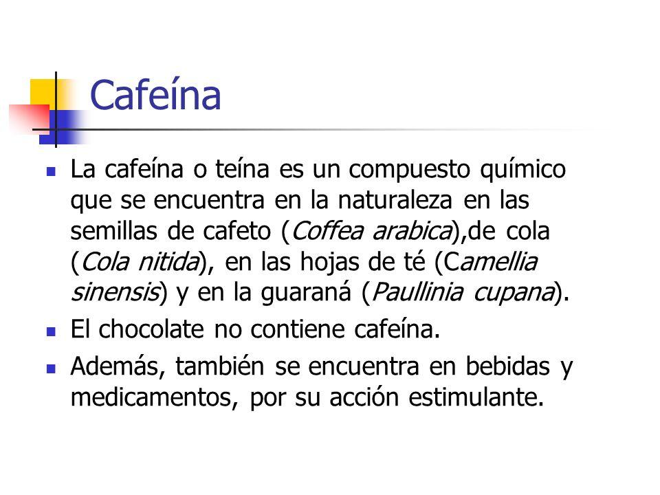 El Chocolate no contiene Cafeína Hay muchas historias acerca de que el chocolate contiene cafeína.
