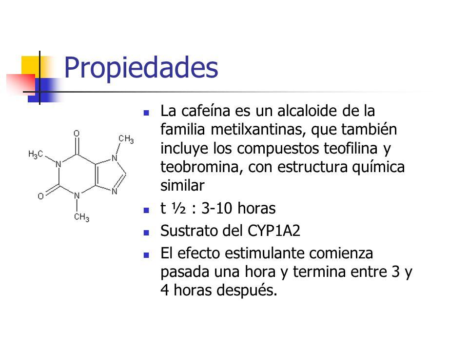 Mecanismo de Acción La cafeína actúa bloqueando los receptores de la adenosina neurotransmisora, que suele tener una acción inhibidora y está relacionada con la aparición del sueño.