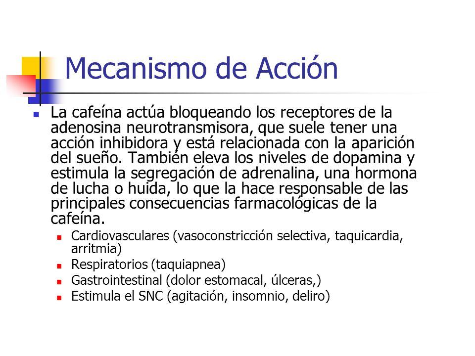 Toxicidad Las personas difieren mucho en cuanto a la sensibilidad a la cafeína, en especial los neonatos (t ½ = 3-4 días).A los 9 meses, la sensibilidad a la cafeína es comparable con la de un adulto.