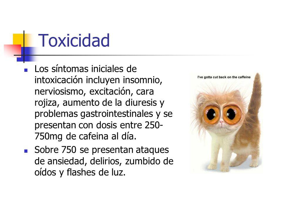 Toxicidad Más allá de 5 gramos al día puede producir contracciones musculares involuntarias, desvaríos, arritmia cardiaca, agitaciones psicomotrices y muerte.