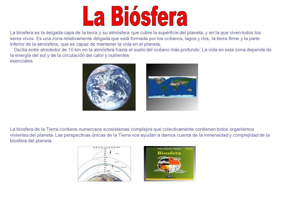 La biosfera es la delgada capa de la tierra y su atmósfera que cubre la superficie del planeta, y en la que viven todos los seres vivos. Es una zona r