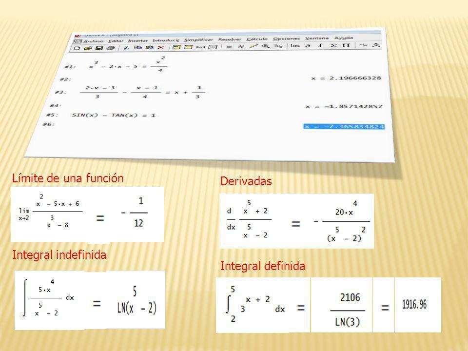 Límite de una función Integral indefinida Derivadas Integral definida