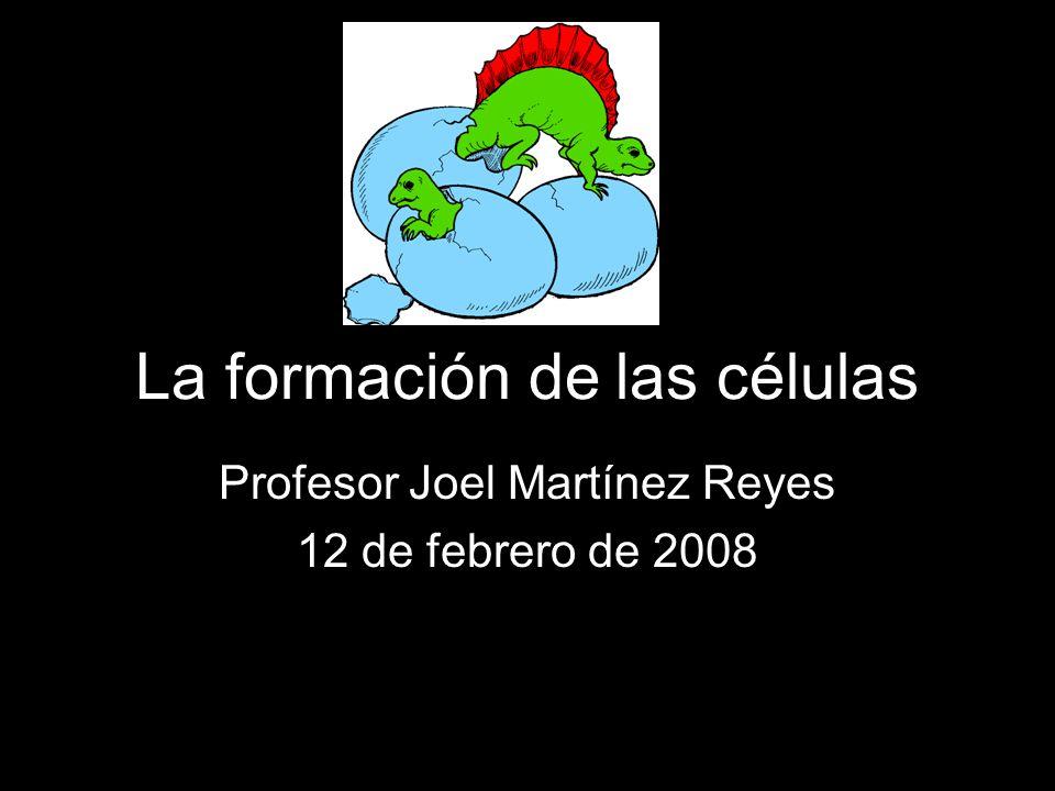 La formación de las células Profesor Joel Martínez Reyes 12 de febrero de 2008