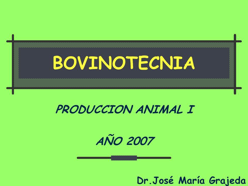 Desarrollo de la Ganadería bovina Es de reeconocer el merito al señor Manuel Ralda Ochoa por ser uno de los más grandes impulsadores de la ganadería bovina y de dichas razas en el país De 1950 a 1959 el crecimiento de la ganadería bovina se dio en un 24%.