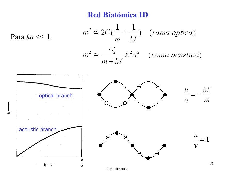 Cap. 3 Fonones - Vibraciones Cristalinas 23 Red Biatómica 1D Para ka << 1: