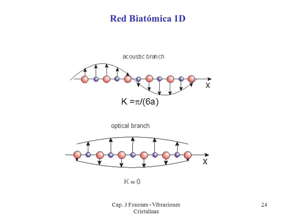 Cap. 3 Fonones - Vibraciones Cristalinas 24 Red Biatómica 1D